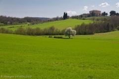 toscane-1082